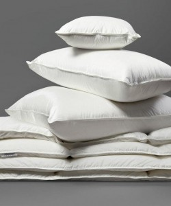 AllerGuard-Pillows-and-Duvets-250x300